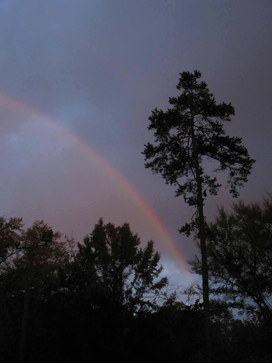 Rainbow in Gardens