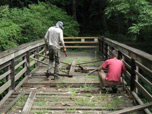 Condemned BGA Bridge